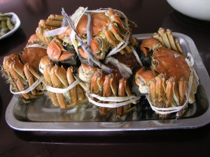 Hairy crabs from the Yangcheng Lake (photo taken in Suzhou)