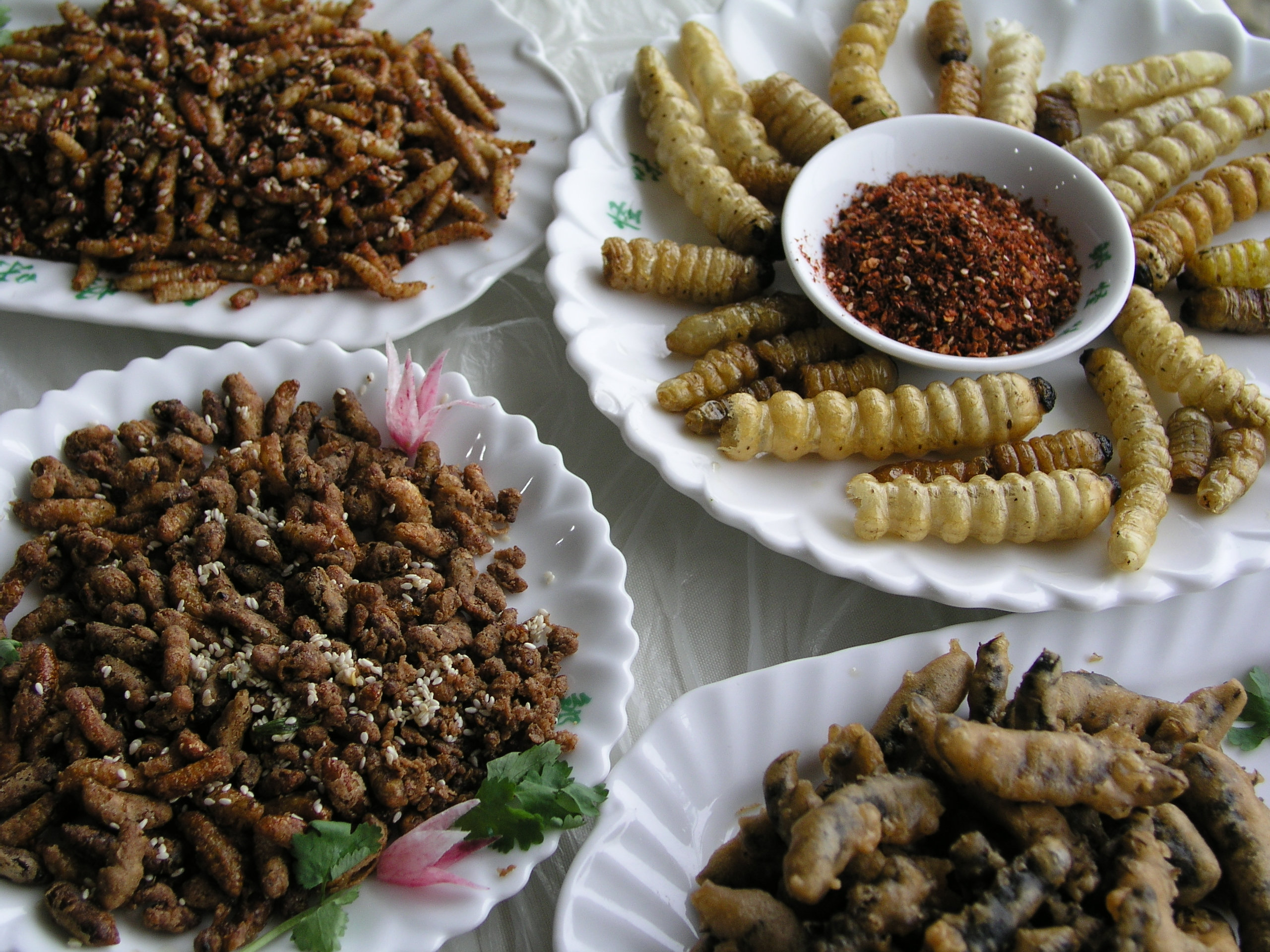 Why not eat insects?  Fuchsia Dunlop